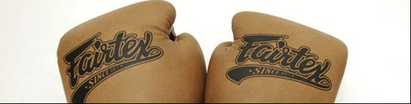 Fairtex Classic Gloves